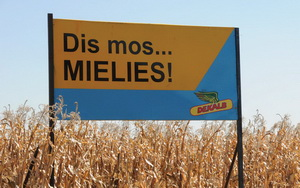 The maize lobby is pressing government to change its mind and allow excess tonnage to be used in the production of bio-diesel.