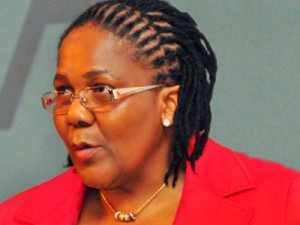 South Africa has a new Minister of Transport, Dipuo Peters, who replaces former Minister Ben Martins