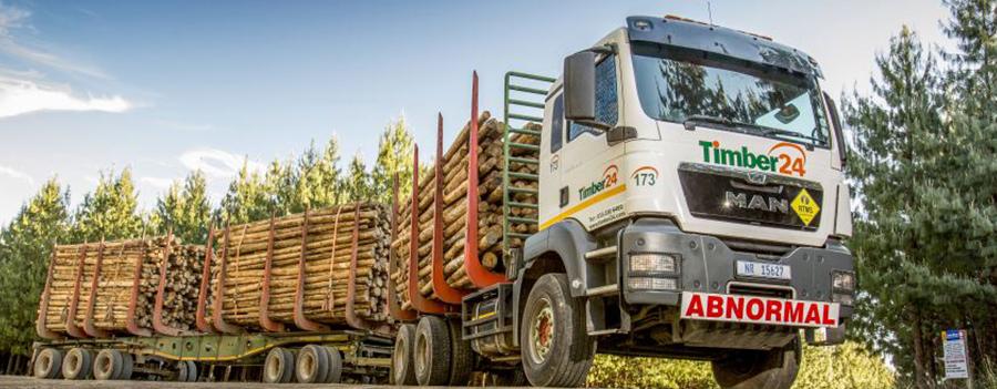 Timber24