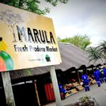 The well-known Marula Fruit Sellers' Market has provided opportunities for the locals to become entrepreneurs and enhance their lives.