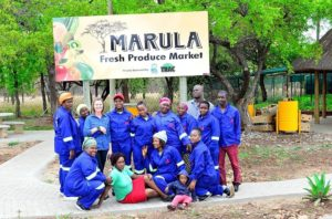 A happy crew. The Marula fruit sellers with TRAC staff – winning all the way.
